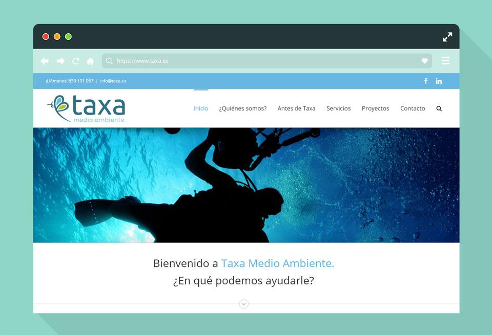 Diseño-web-servicios