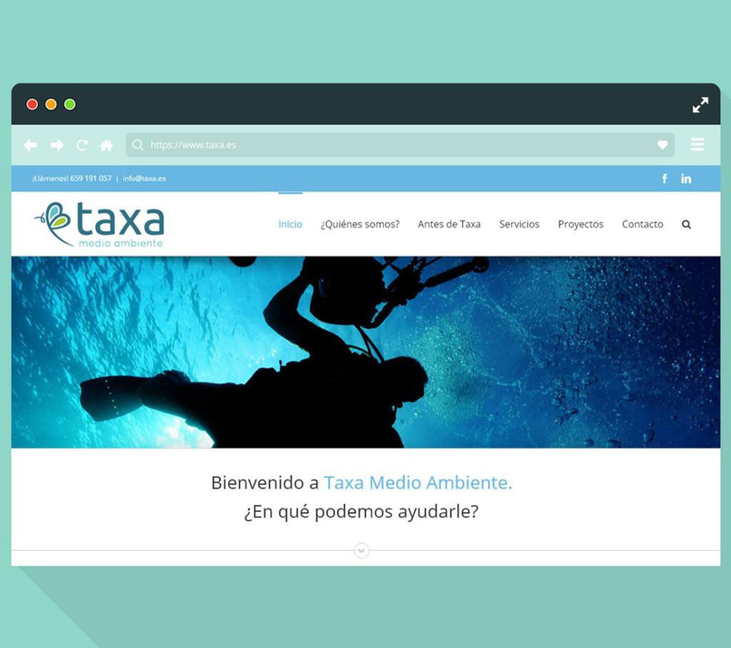 web.taxa